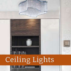 Shop our selection of Ceiling lights from Maxim Lighting