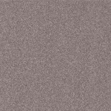 Daltile CD42-881P