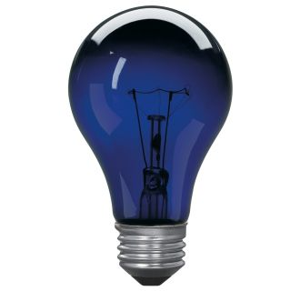 Globe Electric 03920