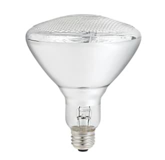 Globe Electric 04636