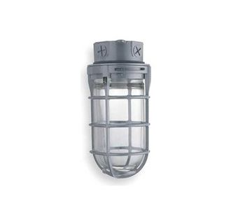 Lithonia Lighting VC300I M6