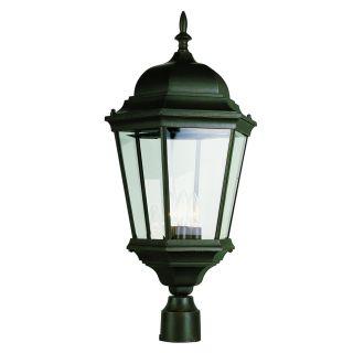 Trans Globe Lighting 51001