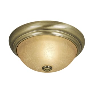 Vaxcel Lighting CC38213