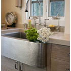Shop Native Trails Kitchen Sinks