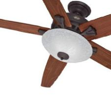 Hunter Indoor Ceiling Fans