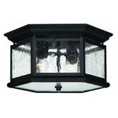 Shop Hinkley Lighting Outdoor Ceiling