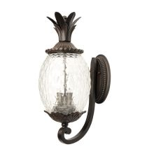 Acclaim Lighting 7501