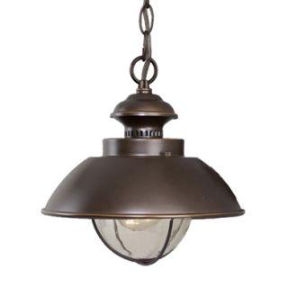 Vaxcel Lighting OD21506 Outdoor Pendant