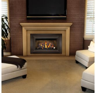 Napoleon Gdizc Direct Vent Gas Fireplace Insert Ask Home Design