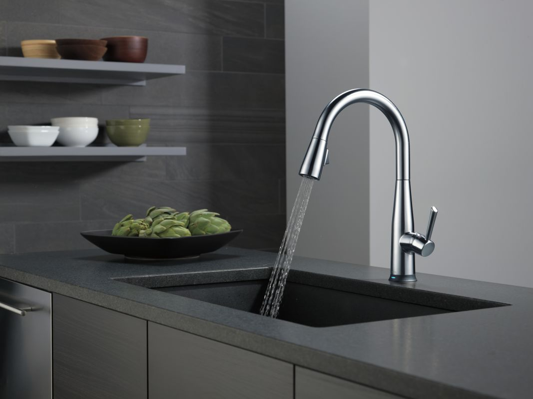 Delta Arctic Stainless Pull Down Kitchen Faucet