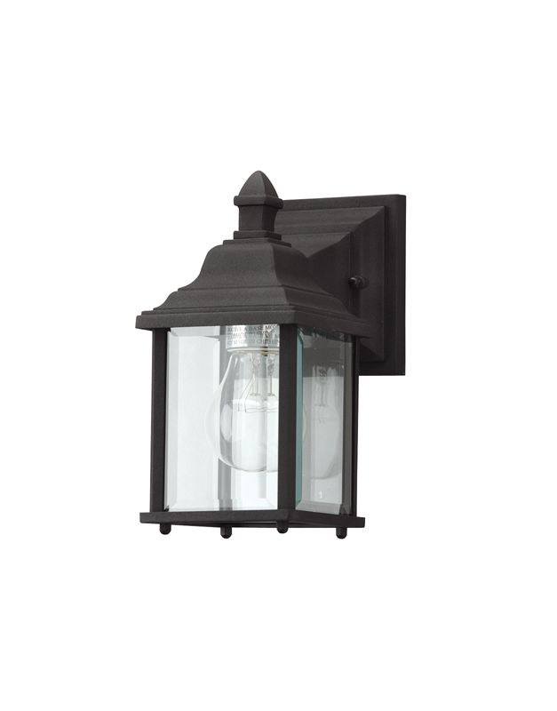 Dolan Designs 930 50 Black Charleston 1 Light 9 Height Outdoor Wall Sco