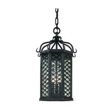 Los Olivos 3 Light Energy Star Rated Outdoor Pendant with Seedy Glass